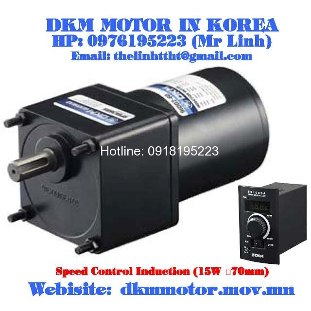 7sdge 15g 7gbk30bmh fx1000a dkm motorkorea for Induction motor speed control
