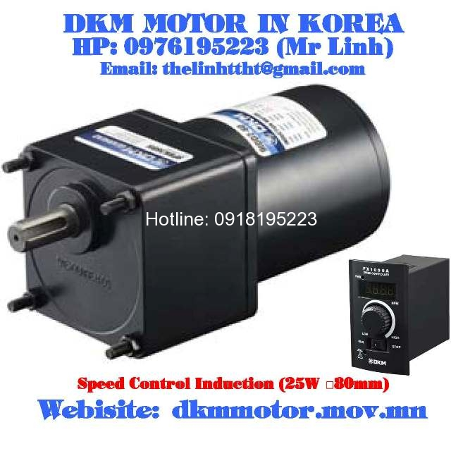 Dong co dkm 8sdge 25g 8gbk15bmh 8gbk30bmh for Speed control of induction motor